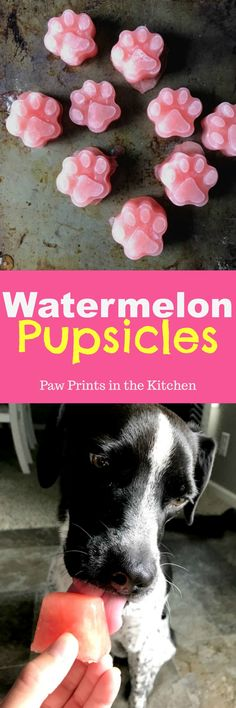 These watermelon pupsicles are one ingredient and are super easy to make! Plus your dog will love them! - Paw Prints in the Kitchen