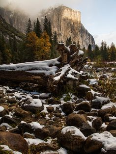 "thebeatcounselor:El Capitan on Flickr. Yosemite Valley, California  ""I do an awful lot of thinking and dreaming about things in the past and the future - the timelessness of the rocks and the hills - all the people who have existed there. I prefer winter and fall, when you feel the bone structure of the landscape - the loneliness of it, the dead feeling of winter. Something waits beneath it, the whole story doesn't show.""   ― Andrew Wyeth"
