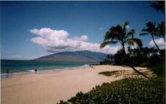 Beach in Maui! The perfect place for a relax and recharge break! Beautiful expanses of white sand beaches for sunning and swimming, lush tropical flowers and plants, amazing local fruit and produce, AND humpback whales!