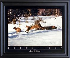 Personalize your spaces with this wildlife animal art print framed poster. This beautiful framed poster captures the image of mountain lion chasing wolf in snow field is sure to add wildlife charm at your place. Its wooden espresso frame accentuates the poster mild tone. The frame is made from solid wood measuring 20x24 inches with a smooth gesso finish. This framed poster includes a wire hanger on the back for easy display.