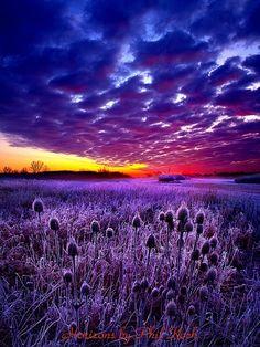 Purple Sunset, Wisconsin