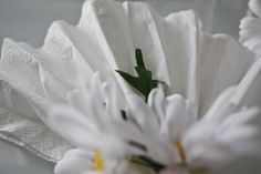 Servietter » Creative Fun 4 You Napkins, Tableware, Plants, Dinnerware, Towels, Dinner Napkins, Tablewares, Plant, Dishes
