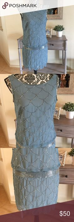Beaded 1920s Dress Absolutely STUNNING 1920s-Great Gatsby-Downton Abbey-style drop waist dress. Beaded and beautiful quality. Size Petite 4. Robins egg blue with silver beading. Side zipper. Adrianna Papell Dresses