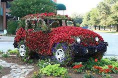car garden!