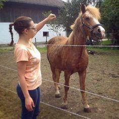 #Mustang z Dzikiej Doliny. Dziś wiejskie klimaty.  #village #horse #Germany #Deutschland #animal #me #holiday #summer #farm by wera_storm