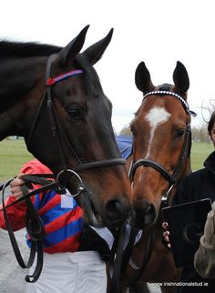 When Moscow Flyer met Sprinter Sacre. Two Legends!