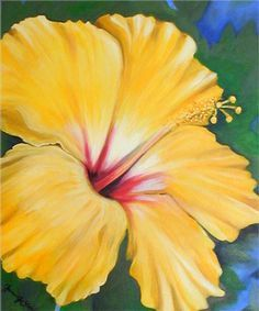 Image Detail for - Janis Stevens Flower Paintings in Oil- Yellow Hibiscus Flower Yellow Hibiscus, Hibiscus Flowers, Cactus Flower, Diy Flowers, Acrylic Flowers, Watercolor Flowers, Painted Flowers, Watercolor Artists, Plant Drawing