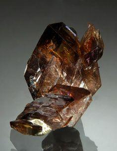 Axinite-(Fe) - Puiva Mount, Saranpaul, Khanty-Mansi Okrug, Tyumenskaya Oblast', Prepolar Ural, Western-Siberian Region, Russia Size: 2.0 x 2.8 cm