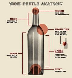 Wine Bottle Anatomy