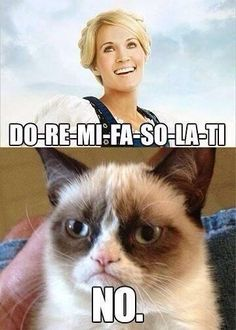 Totally agree grumpy cat.