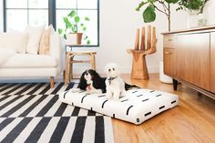 Brooklyn-based Laylo Pets is bringing serious style to the pet accessories game with their modern range of orthopedic dog beds. Custom Dog Beds, Dog Milk, Designer Dog Beds, Dog Beds For Small Dogs, Orthopedic Dog Bed, Dog Pillow Bed, Sleeping Dogs, Bed Covers, Dog Design