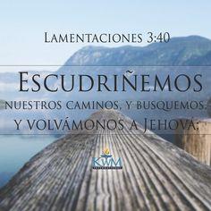Escudriñemos nuestros caminos, y busquemos, y volvámonos a Jehová.