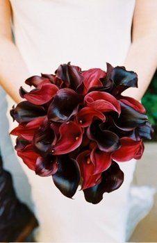 Wedding, Flowers, Red, Black
