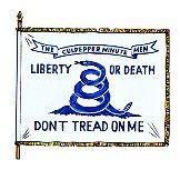 The Culpepper Minute Men / Virginia Continental Line American Revolutionary War, American War, Early American, American History, Barbary Wars, Colonial America, Us History, Persecution, Military History