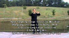 14 Forms of Meridians Qigong-2014 (十四式经络气功-2014)