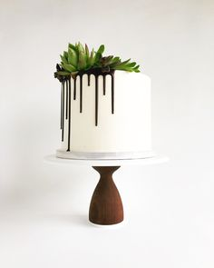 Yesterday's cake topped with succulents for a lovely bridal shower. Insid