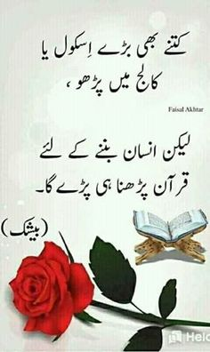love poetry urdu ghazal \ love poetry urdu ` love poetry urdu romantic ` love poetry urdu for him ` love poetry urdu ghazal ` love poetry urdu for husband ` love poetry urdu for friends ` love poetry urdu romantic romans ` love poetry urdu islamic Urdu Quotes With Images, Funny Quotes In Urdu, Poetry Quotes In Urdu, Urdu Funny Poetry, Best Urdu Poetry Images, Sufi Quotes, Love Poetry Urdu, Imam Ali Quotes, Qoutes