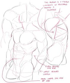 Drawing body male tutorials anatomy reference Ideas Best Picture For Illustrations boy For Yo. Body Reference Drawing, Guy Drawing, Drawing Reference Poses, Drawing Base, Anatomy Reference, Design Reference, Drawing People, Drawing Tips, Drawing Ideas