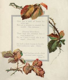 Fall leaves on thorny branches or vines ~ border.  Image from Shakespeare book, c.1909.
