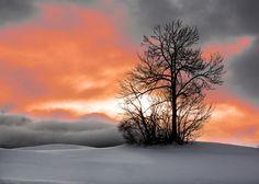 Alps ... Sunrise .... by Paladyan Konstantin on 500px