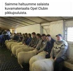 Risultati immagini per speed dating in wales Clean Funny Jokes, Stupid Funny Memes, Hilarious, Weekend Humor, Meet Local Singles, Speed Dating, Dating Humor, Cute Funny Animals, Funny Pictures