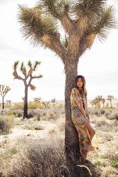 Desert Dreams By Rocky Barnes Blog