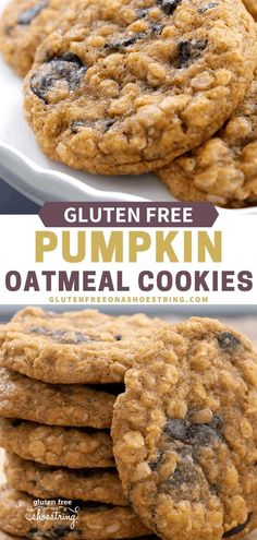 A perfect cookie for the holiday season!!! Soft and chewy pumpkin oatmeal cookies are packed with the season's spices and flavors! These easy cookies are gluten free, making them not only delicious but healthy too! Can be made with chocolate chips, raisins, dried cranberries or a combination of all three! Perfect for a Thanksgiving dessert too! #glutenfreecookies #holidaycookies #pumpkinrecipe #oatmealcookies