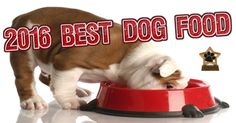 Top 15 Best Consumer Rated Dry Dog Food Brands for 2016