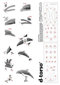 Dolphin 137_white | ディートルソ ペーパークラフト by アキ工作社 | イルカ段