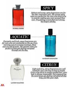 Men's Perfume Guide