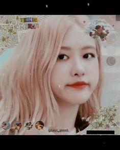 Rose Video, Blackpink Video, Foto E Video, Aesthetic Videos, Aesthetic Pictures, Foto Rose, Red Velvet Photoshoot, Korean Girl Band, Video Rosa