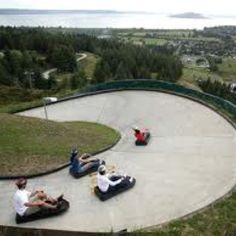 Luge - Rotorua, New Zealand  Not my picture - but I loved this when I was there
