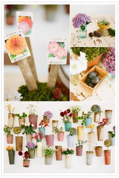 I want to grow most of the flowers for our wedding. #flowers #homegrown #vintage