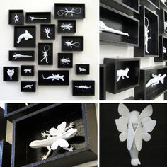 "Saatchi Online Artist: Arianna Piazza; Mixed Media, 2010, Installation ""do you want see my butterfly collection?"""