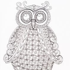 A Beautiful Owl Crying Out To Be Coloured In