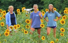 Roberts family in Anderson has planted six acres of sunflowers to raise money for local charities.