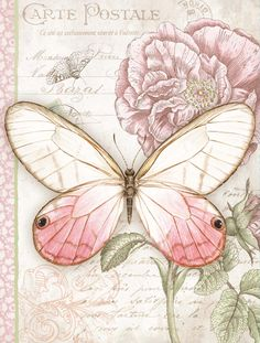 Pink Butterfly Address Book - Organize all of your friend's addresses for your upcoming spring get together with this traditional art address book. This address book features 21 alphabetical tab sections and nature art on the cover.