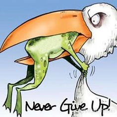 Never give up!  here's to the frog :)