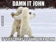 I'm not a smart bear...