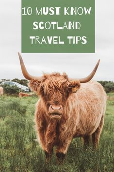 Tips and things to know before your epic trip to Scotland. Including Glasgow, Edinburgh, Falkirk, the Scottish Highlands, and more! Europe Travel Outfits, Travel Europe Cheap, Fall Travel Outfit, Travel Through Europe, European Travel, Outfit Summer, Spain Travel, Glasgow, Edinburgh