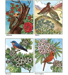 Dover Publications COLORING BOOK OF STATE BIRDS AND FLOWERS