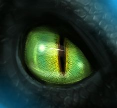 Toothless eye | HTTYD