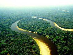 Negro River Pantanal Landscape - Daniel de Granville