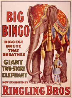 Vintage Ringling Bros - Big Bingo Elephant - Circus Poster