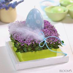 Frühlingsdekoideen: Blumen zu Ostern in Pastellfarben - Gesteck mit Schleierkraut und Eierkerze