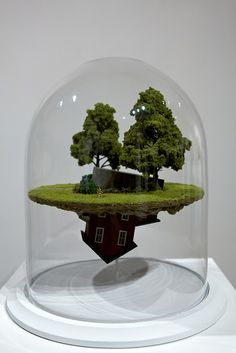 Suburban terrarium - I just have one question - how?