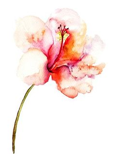 Watercolor Pink Flower Painting