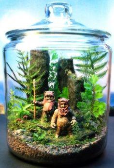 Ewok Duo - Endor Forest Terrarium - Star Wars - Return of the Jedi. $145.00, via Etsy. by Naja05