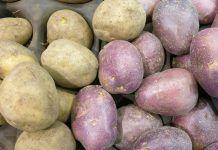 Diferența dintre cartofii albi și cei roșii. Care sunt mai sănătoși Mai, Potatoes, Vegetables, Food, Potato, Essen, Vegetable Recipes, Meals, Yemek