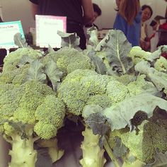 #farmersmarketnyc #broccoli #Manhattan Abingdon Square Greenmarket via mhtngreenmarkets on Instagram